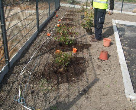 prestations-entretien-compost